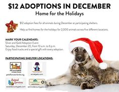 Want to bring a new four-legged family member home for the holidays? Check out this great adoption deal being offered all month by our friends at Seminole County Animal Services