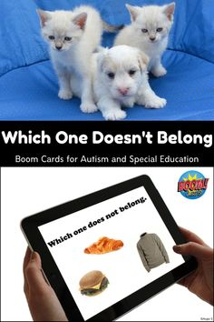 This is a great set for learning negation. Each slide presents the student with 3 items and asks which one does not belong. Some slides have obvious items that do not belong and others are more tricky. #boomcards #distancelearningtpt Special Needs Students, Special Needs Kids, Learning Resources, Teacher Resources, Co Teaching, Teaching Ideas, Which One Doesnt Belong, School Closures, Special Education Classroom