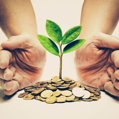 Millennials and Generation Z are more willing than their predecessors to buy sustainable products and offerings from many businesses, including retail banking. But green finances can benefit anyone, not just the younger generations. Free up your time and money with these tips for how you can start working toward an eco-friendly financial plan!