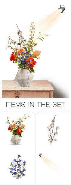 """""""Pressed Flowers"""" by mlkdmr ❤ liked on Polyvore featuring art"""