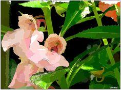 Fiori d'estate - FOTO-ARTE-FATTE in Diaporama  http://ilmioblogdiprova.over-blog.it/2014/07/fiori-d-estate.html
