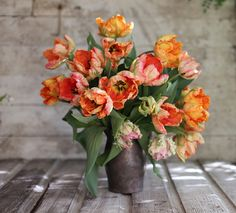parrot tulips by Erin Benzakein / Floret Flower Farm, via Flickr