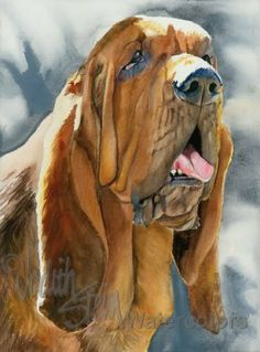 BLOODHOUND Dog Pet Portrait Watercolor Painting Art by k9stein, $22.50