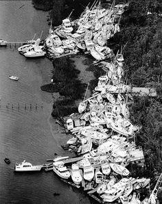 Isle of Palms - After Hurricane Hugo