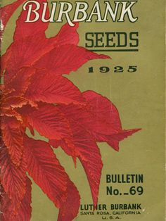 1925 Luther Burbank seed catalog in our collection