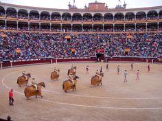 Bull Fight in Spain