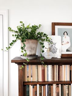 This plant is called pamela English ivy and I have never seen ivy quite like it before! The leaves are so detailed. Billy Ikea, First Home, Interior Design Inspiration, Decoration, My Dream Home, Cheap Home Decor, Home And Living, Home Remodeling, Interior And Exterior