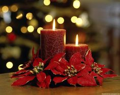 Stunning Indoor Christmas Candle Inspirations For Christmas Table – Easyday Merry Christmas To All, Christmas Music, Christmas Holidays, Christmas Decorations, Christmas Flowers, Christmas Quotes, Simple Christmas, Beautiful Christmas, Magical Christmas