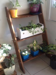 Mueble para plantas on pinterest propagate succulents - Mueble para plantas ...