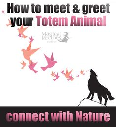 Totem Animals & familiars. A spell to connect and conjure your Familiar - Magical Recipes Online