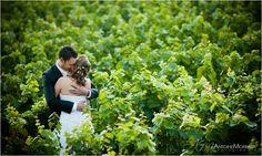 Sympa les photos de mariage dans les vignes! http://www.antoine-morfaux.com/images/blog/photos/20110913-photographe-mariage-en-cote-d-or/photos-de-mariage-dans-vignes.jpg