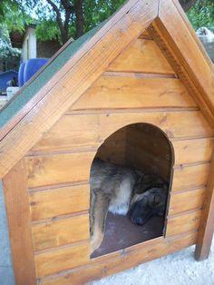bijzondere poorten hondenhok]\ - Google zoeken