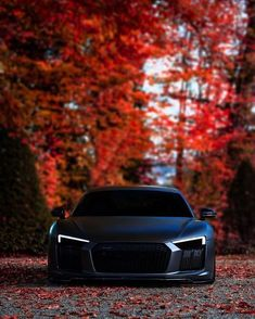 1127 Best #Audi images in 2019
