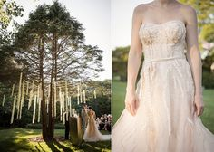 Once Wed | whimsical tree!