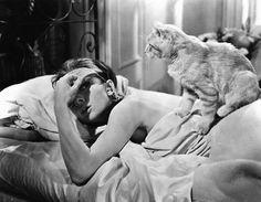 Audrey Hepburn & cat