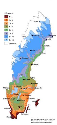 Planting zones in Sweden Zonkarta Sverige. Gardening Zones, Gardening Tips, Glamping, Gardening Magazines, Modern Garden Design, Outdoor Areas, Dream Garden, Garden Inspiration, Beautiful Gardens