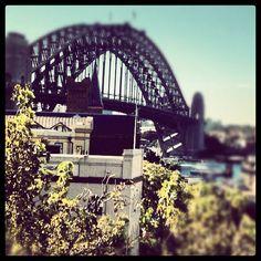 @magellan72 | #sydney #bridge #baybridge #sidneybaybridge |