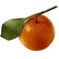 clementine.gif 200×200 pixels