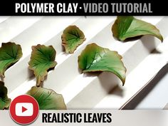 Video Tutorial - Realistic Leaves - Leafs - Polymer Clay Tutorials - Beautiful Step by Step PolyClay Tutorial - Master Class - Clay Fimo by SweetyBijou on Etsy