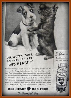 1936 Red Heart dog food ad