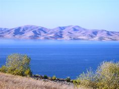 Medeiros Campground | San Luis Reservoir | Hipcamp