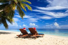 when is the best time to visit Barbados?