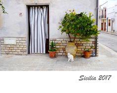 poetry of life   : Kalendár Sicilia 2017
