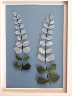 Genuine green sea glass collected from a beach on the central coast of California arranged into a collage of white lupine flowers. Frames in a chocolate wood measuring 8x10 Frame with a white mat measuring 5x7.