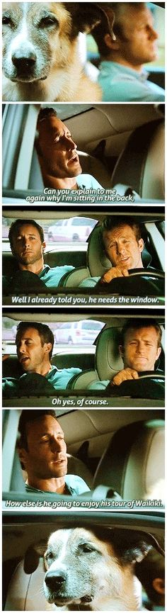 When Danno actually got to drive