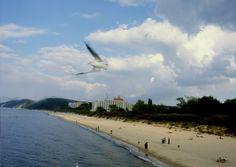 miedzyzdroje sea - Hledat Googlem Sea, Water, Outdoor, Gripe Water, Outdoors, The Ocean, Ocean, Outdoor Games, The Great Outdoors