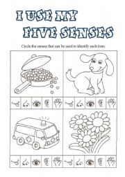 sense of taste worksheet for kindergarten kindergarten the 5 senses worksheets free printables. Black Bedroom Furniture Sets. Home Design Ideas