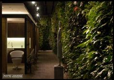 Phyto Universe by Patrick Blanc Community Post: 39 Insanely Cool Vertical Gardens Garden Planters, Garden Beds, Vertical Garden Design, Vertical Gardens, Salon Interior Design, Backyard, Patio, Gardening, Window Boxes