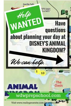 Confused about planning your day at Disney's Animal Kingdom? Read this FIRST to help minimize your waits | Walt Disney World | Animal Kingdom | Touring plans | FastPass+ suggestions