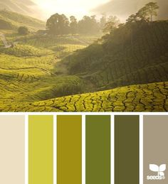 世界上最優雅的配色 - ㄇㄞˋ點子靈感創意誌