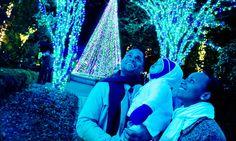 Light up your holiday season with a trip to the Atlanta Botanical Garden's Garden Lights!