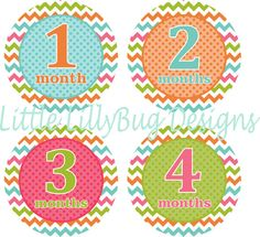 Hey, I found this really awesome Etsy listing at https://www.etsy.com/listing/163553291/baby-month-stickers-baby-monthly