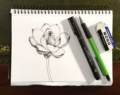How to Draw Beautiful Floral Art with Pens Flower Art Drawing, Flower Drawing Tutorials, Pencil Drawings Of Flowers, Floral Drawing, Outline Drawings, Pencil Art Drawings, Painting Tutorials, Drawing Skills, Drawing Lessons