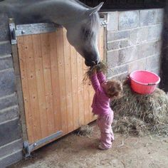 little girls and their horses