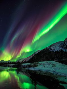 Northern lights I wish I could see this in real life #beautiful