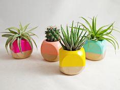 Geometric Succulent Cactus Planter (Plant not included)