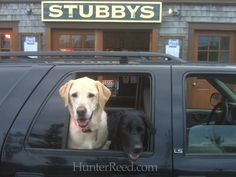 Nantucket. Barclay and Gilligan love Stubby's burgers! #Nantucket