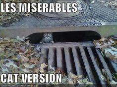 Les Misérables Memes