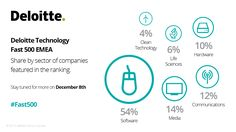 Deloitte Technology Fast 500 EMEA. Share by sector of companies featured in the ranking. #Fast500 #Fast500EMEA #Deloitte #CE #CentralEurope #Technology #Fast #500