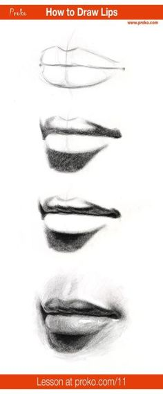 Learn how to draw realistic lips! Follow along with this drawing instruction at proko.com/11 by wilma
