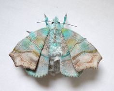 This light blue herald moth is about 4 1/2 inch tall and 7 inch wide. The wings are made from cotton fabric and the body is made from fake fur. It is