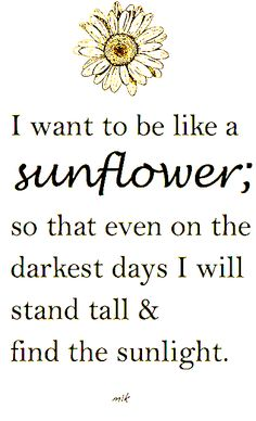 I want to be like a sunflower; so that even on the darkest days I will stand tall & find the sunlight. - M.K.                                                                                                                                                      More