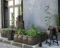 City farming is tough but I think these flexible plant bags would help considerably. neat product by Bacsac! Small Gardens, Outdoor Gardens, Plant Bags, Garden Bags, Square Foot Gardening, Edible Garden, Easy Garden, Herb Garden, Balcony Garden