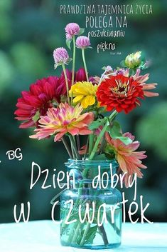 Plants, Polish, Good Morning, Pictures, Funny Stuff, Plant, Planets