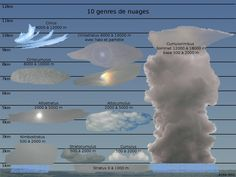 Les nuages sont classés selon la norme de l'Organisation météorologique mondiale en dix espèces différentes. Cette classification, basée sur l'altitude des nuages, fait suite à une classification réalisée en 1896 selon l'Atlas international des nuages.