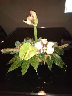 Amaryllis, anthurium en rozen 2016